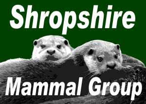 Shropshire Mammal Group